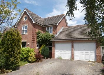 Thumbnail 4 bed detached house to rent in Topaz Grove, Waterlooville