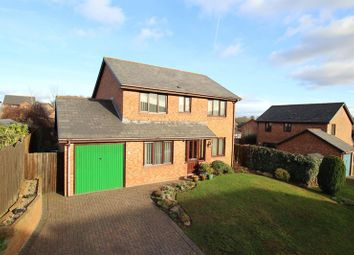Thumbnail 4 bedroom detached house for sale in Beacons Park, Brecon