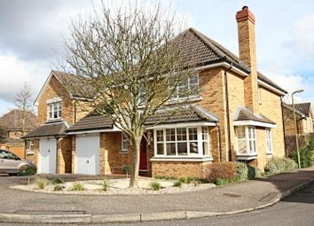 Thumbnail 4 bed detached house to rent in Wilson Close, Bishops Stortford, Herts