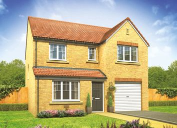 "Thumbnail 4 bed detached house for sale in ""The Longthorpe"" at Anmore Road, Denmead, Waterlooville"