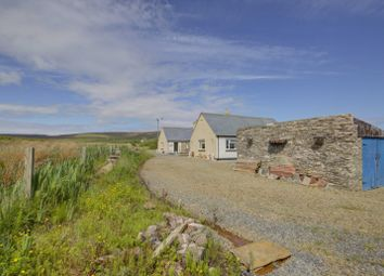 Thumbnail 3 bed detached bungalow for sale in Faroe, Rousay, Orkney