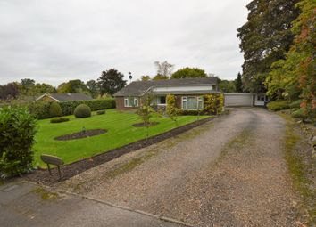 Thumbnail 4 bed detached bungalow for sale in Maybourne Rise, Woking, Surrey