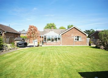 Thumbnail 4 bedroom bungalow for sale in Northwood Green, Westbury-On-Severn