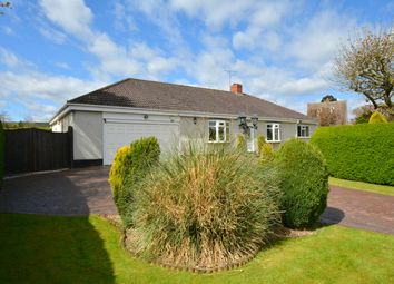 Thumbnail 3 bed bungalow for sale in Nethermoor Road, Wingerworth, Chesterfield