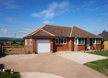 Thumbnail 3 bed detached bungalow for sale in Henlade, Taunton