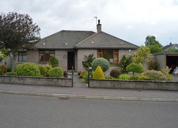 Thumbnail 3 bedroom bungalow to rent in Bishoploch Road, Arbroath