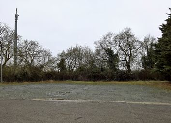 Thumbnail Land to let in West Hanningfield Road, Chelmsford