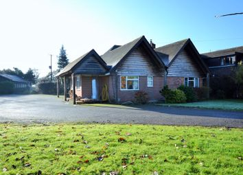 Thumbnail 3 bed semi-detached bungalow for sale in Burford, Tenbury Wells