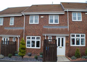 Thumbnail Terraced house for sale in Mowbray Villas, South Shields