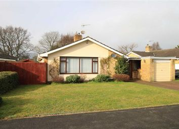 Thumbnail 3 bed detached bungalow for sale in Braemar Drive, Highcliffe, Christchurch, Dorset
