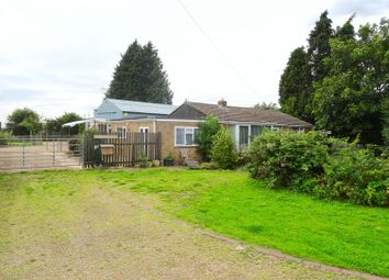 Thumbnail 3 bed detached bungalow for sale in Sunflowers, Cranesgate South, Holbeach St Johns