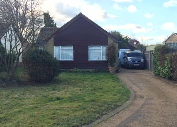 Thumbnail 3 bedroom bungalow to rent in Jewell Grove, Marden