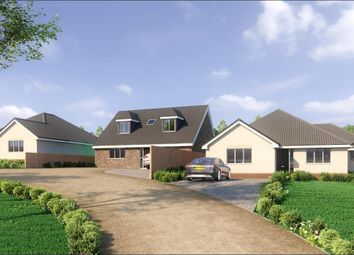 Thumbnail 3 bed bungalow to rent in Church Hill, Ramsey, Harwich