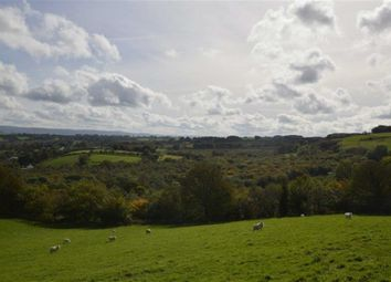 Thumbnail Land for sale in Lot 2, Navy Hall Woodland, Bronant, Aberystwyth, Ceredigion