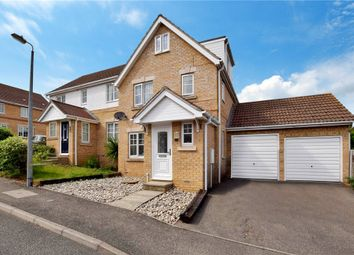 Thumbnail 5 bed semi-detached house for sale in Cherry Tree Close, Halstead, Essex