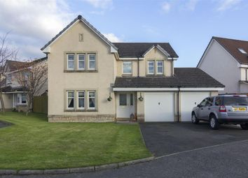 Thumbnail 4 bed detached house for sale in Anderson Avenue, Falkirk