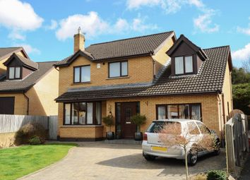 Thumbnail 3 bed detached house for sale in Old Mill Grove, Dundonald, Belfast