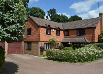 Thumbnail 5 bed detached house for sale in Binfield, Bracknell