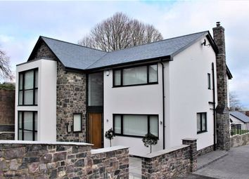 Thumbnail 4 bedroom detached house for sale in West Cross Avenue, Mumbles