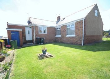 Thumbnail 2 bed bungalow for sale in Ivy Avenue, Seaham