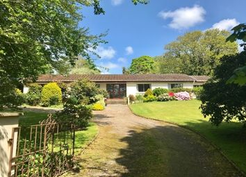 Thumbnail 3 bed bungalow to rent in Feock, Truro
