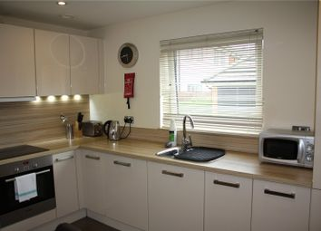 Thumbnail 2 bed flat to rent in Puffin Way, Reading, Berkshire