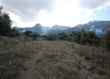 Thumbnail Land for sale in Lcat012, Catalkoy, Cyprus