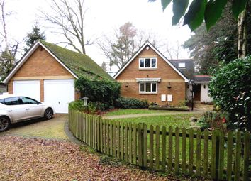 Thumbnail 4 bed detached bungalow for sale in Park Lane, Alderholt, Fordingbridge