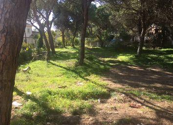 Thumbnail Land for sale in Vale Do Garrão, Almancil, Loulé, Central Algarve, Portugal