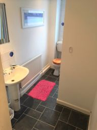 Thumbnail 6 bed terraced house to rent in Shoreham Street, Sheffield
