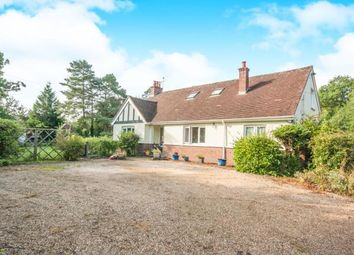 Thumbnail 6 bedroom bungalow for sale in Meath Green Lane, Horley, Surrey
