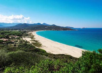Thumbnail 2 bed apartment for sale in Belgodere, Haute-Corse, Corse