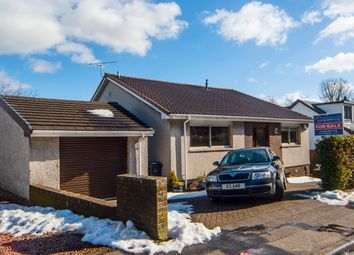 Thumbnail 4 bed detached house for sale in Carronvale Road, Larbert