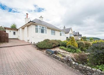 Thumbnail 4 bed detached bungalow to rent in Pickletullum Road, Perth