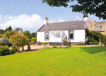 Thumbnail 2 bedroom detached bungalow for sale in Sinclair Street, Helensburgh, Argyll & Bute