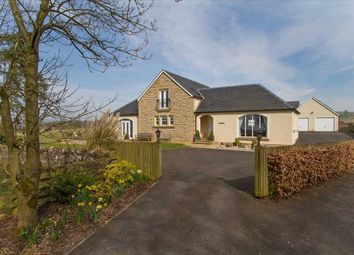 Thumbnail 5 bedroom detached house for sale in Ochil Lodge, 1 Tethyknowe Steading, Dollar