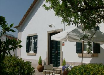 Thumbnail 4 bed detached house for sale in Lamas E Cercal, Lamas E Cercal, Cadaval
