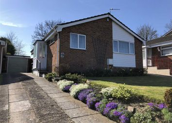 Thumbnail 2 bed detached bungalow to rent in Leighton Park Road, Westbury, Wiltshire