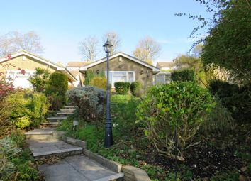 Thumbnail 2 bed semi-detached bungalow for sale in Crescent Drive North, Brighton
