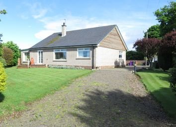 Thumbnail 3 bed detached house for sale in Montrose