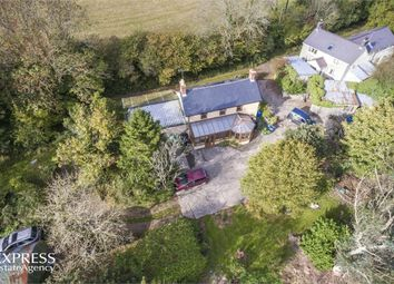 Thumbnail 4 bed detached house for sale in Llanddewi Velfrey, Narberth, Pembrokeshire