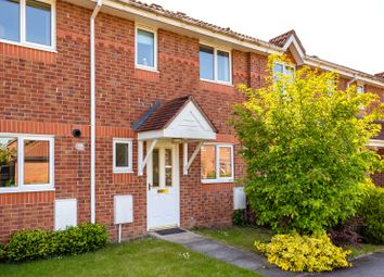 Thumbnail 3 bed terraced house to rent in Birch Park, York