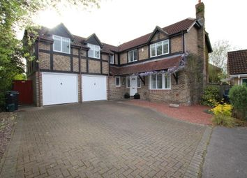 Thumbnail 5 bed detached house to rent in Percheron Drive, Knaphill, Woking