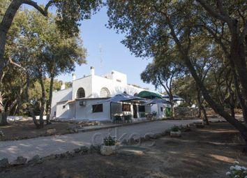 Thumbnail 14 bed farmhouse for sale in Sp 107, Avetrana, Taranto, Puglia, Italy