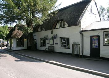 Thumbnail Restaurant/cafe to let in The Cross, Burley, Ringwood