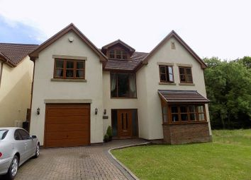 Thumbnail 5 bedroom detached house for sale in Tan Y Coed, Varteg Row, Bryn, Port Talbot, Neath Port Talbot.