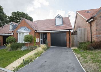 Thumbnail 2 bed detached bungalow to rent in Vaughan Close, Hartley Wintney, Hook