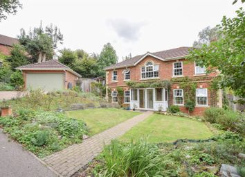 Thumbnail 4 bed detached house for sale in Broad Buckler, St. Leonards-On-Sea