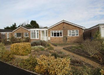 Thumbnail 4 bed bungalow for sale in Richards Way, Harnham, Salisbury, Wilts