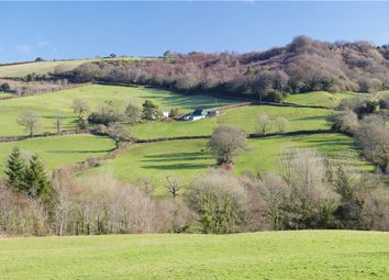 Thumbnail 3 bed equestrian property for sale in Fishpond, Bridport, West Dorset